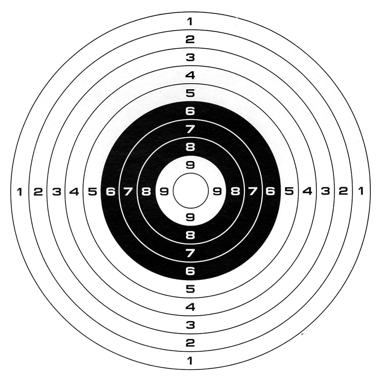 persuaive essay airsoft gun