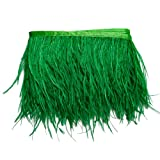 wanjin Ostrich Feathers Trims Fringe with Satin Ribbon Tape for Dress Sewing Crafts Costumes Decoration Pack of 2 Yards (green) (Color: 17#-green)