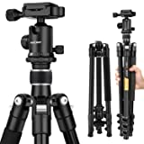 K&F Concept TM2324 62 inch Compact and Lightweight Aluminum Tripod with 360° Ball Head Compatible with Digital Camera (Silver) (Color: Silver)