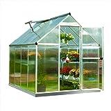 Palram Nature Series Mythos Hobby Greenhouse - 6' x 8' x 7'- Silver (Color: Silver, Tamaño: 6' x 8' x 7')