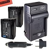 BM Premium 2-Pack of VW-VBT190 Batteries and Battery Charger for Panasonic HC-V800K, HC-VX1K, HC-WXF1K, HCV520, HC-V550, HCV710, HCV720, HC-V750, HC-V770, HC-VX870, HC-VX981, HC-W580, HC-W850, HCWXF99 (Tamaño: 2Batteries + Single Charger)