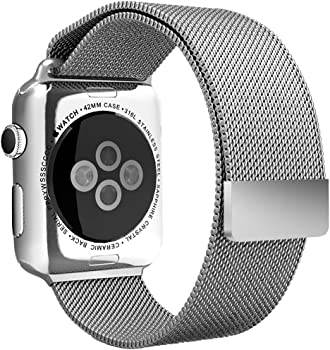 Apple 42mm Aerb Magnetic Watch Band
