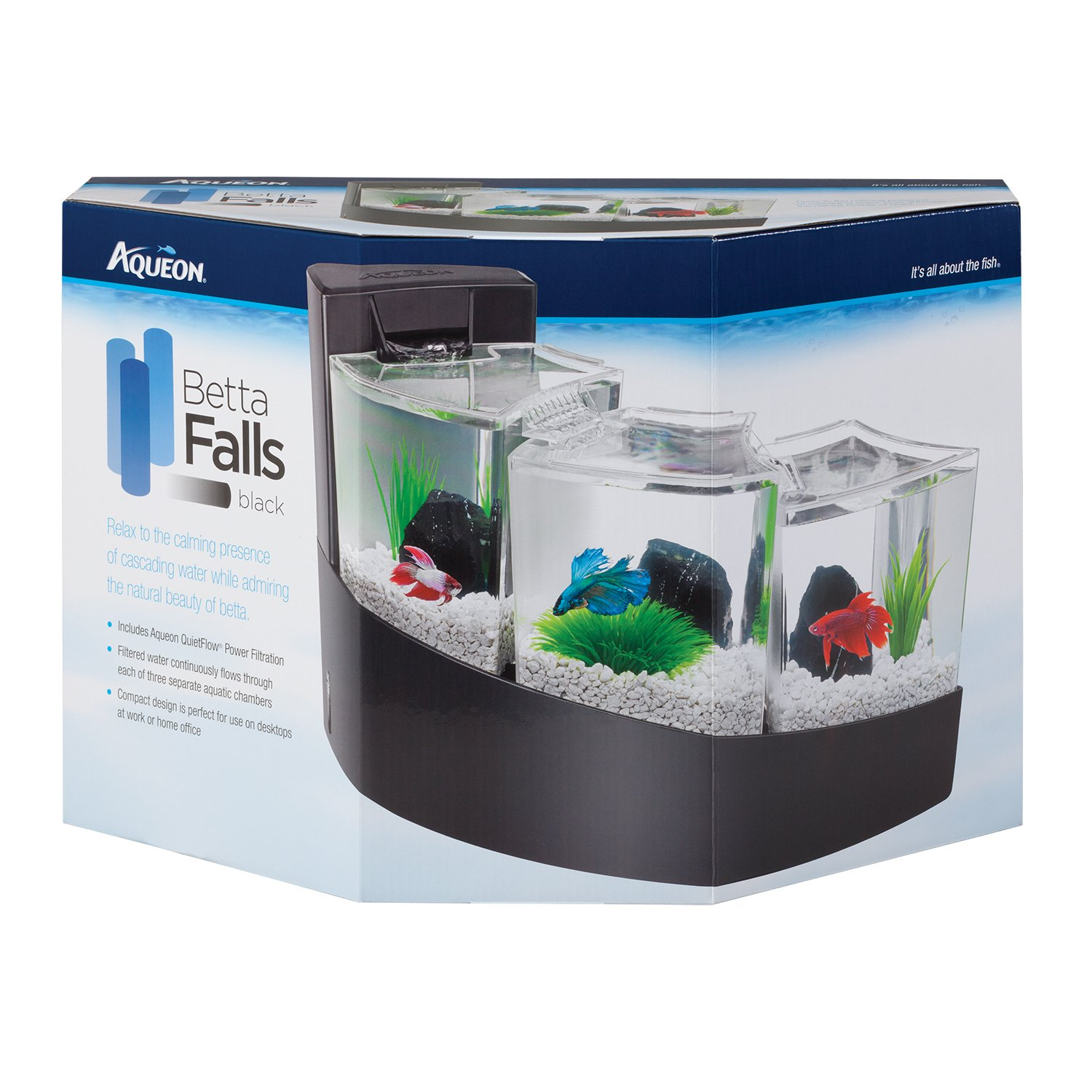 Fish aquarium price in bangalore - Fish Aquarium Price In Bangalore