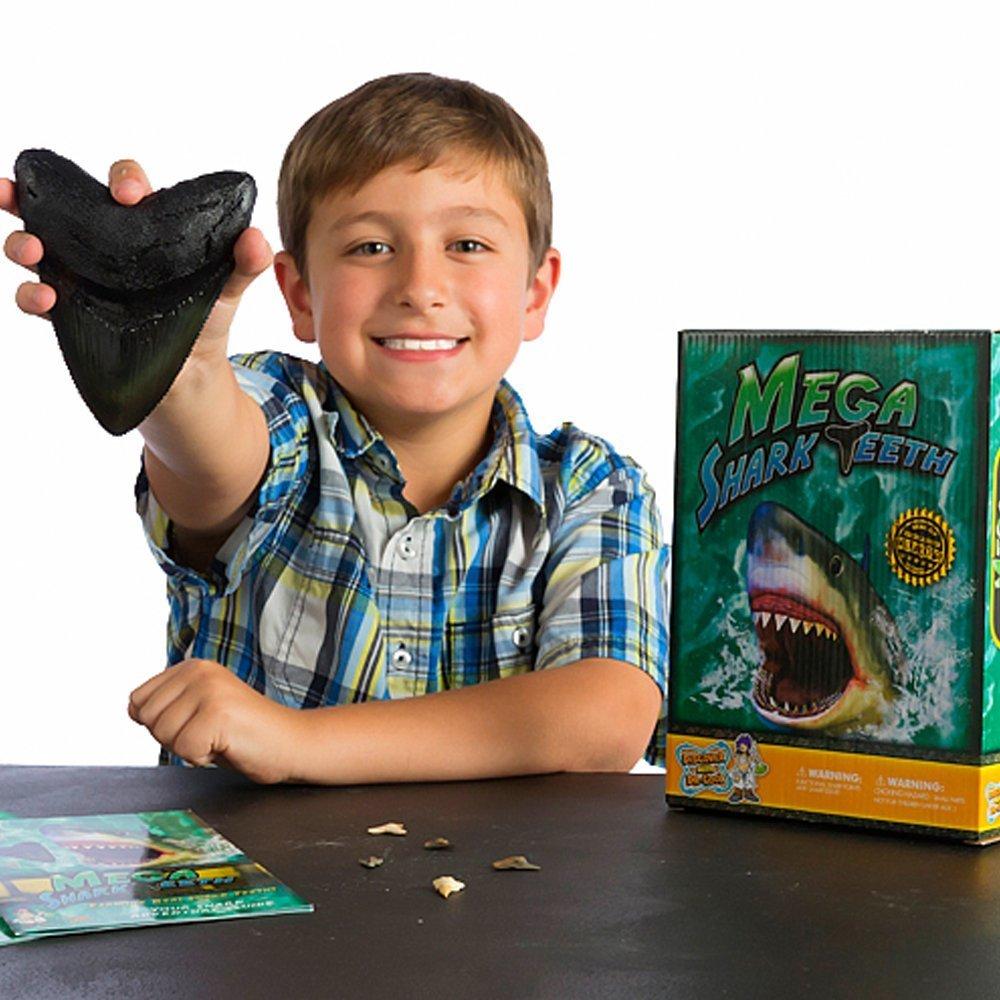 Buy Mega Shark Teeth Now!