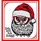 Full Range of Embroidery Starter Kits Stamped Cross Stitch Kits Beginners for DIY Embroidery (Multiple Pattern Designs)-Christmas owl (Color: Christmas owl)