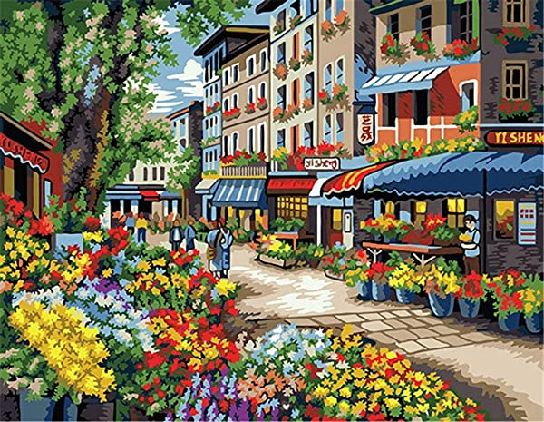 CaptainCrafts New Paint by Numbers 16x20 for Adults, Kids Linen Canvas - Flowers Street, City, Shop (with Frame) (Tamaño: With Frame)
