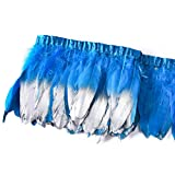 wanjin Duck Goose Feathers Trim Fringe Craft Feather Clothing Accessories Pack of 2 Yards(Turquoise and Silver) (Color: 1,turquoise and Silver)