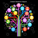 Instant Research Report