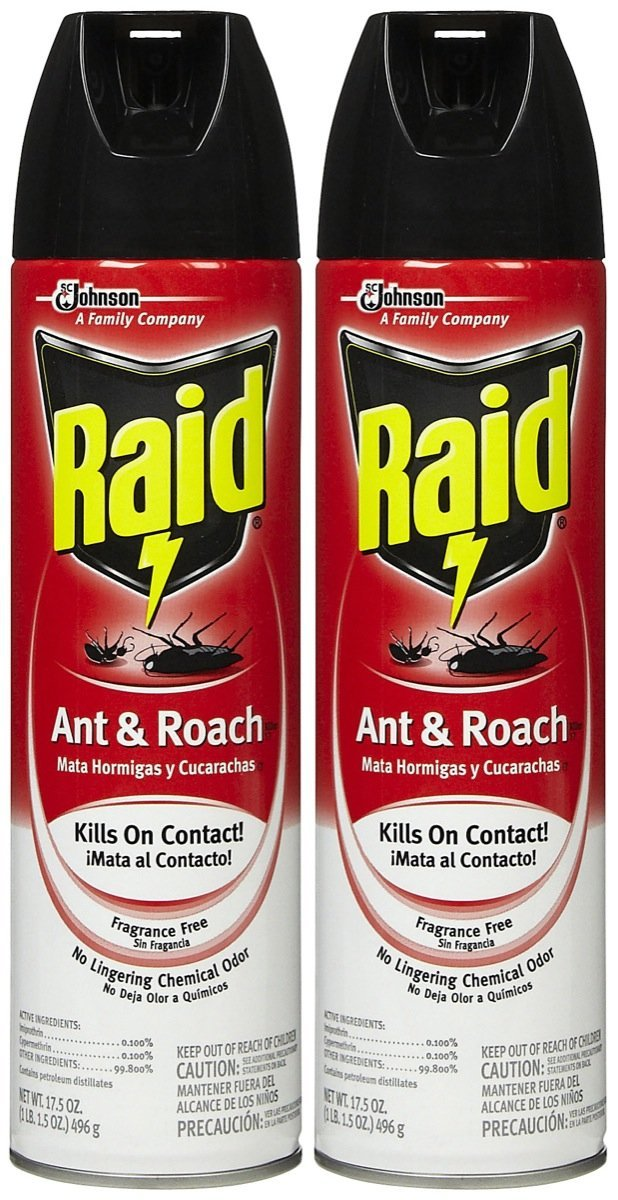 Amazon.com: Raid 11717 Ant & Roach Killer: Patio, Lawn & Garden