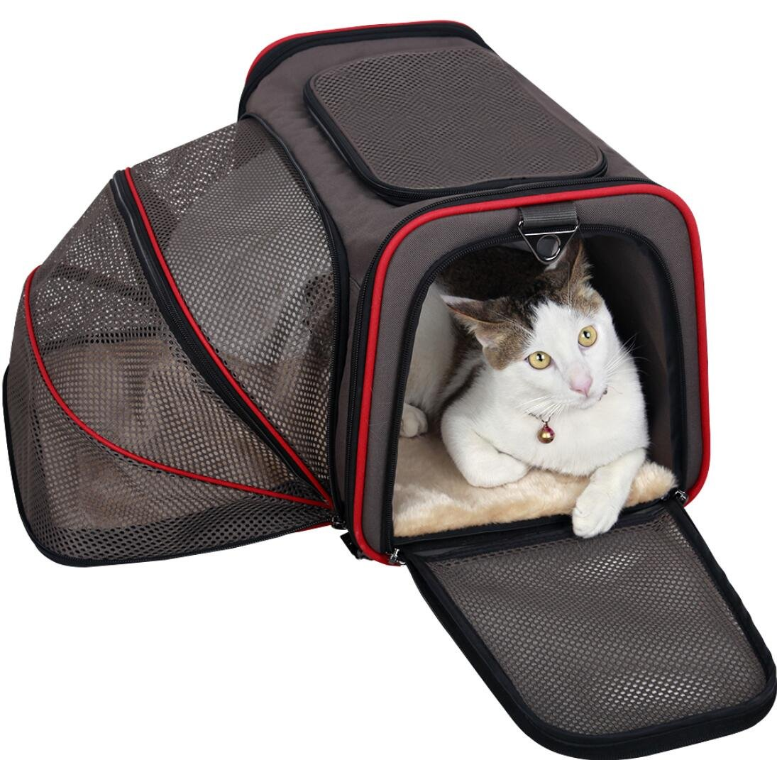 Expandable Foldable Washable Travel Carrier Airline