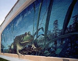 Frog mural by artist Robert Dafford