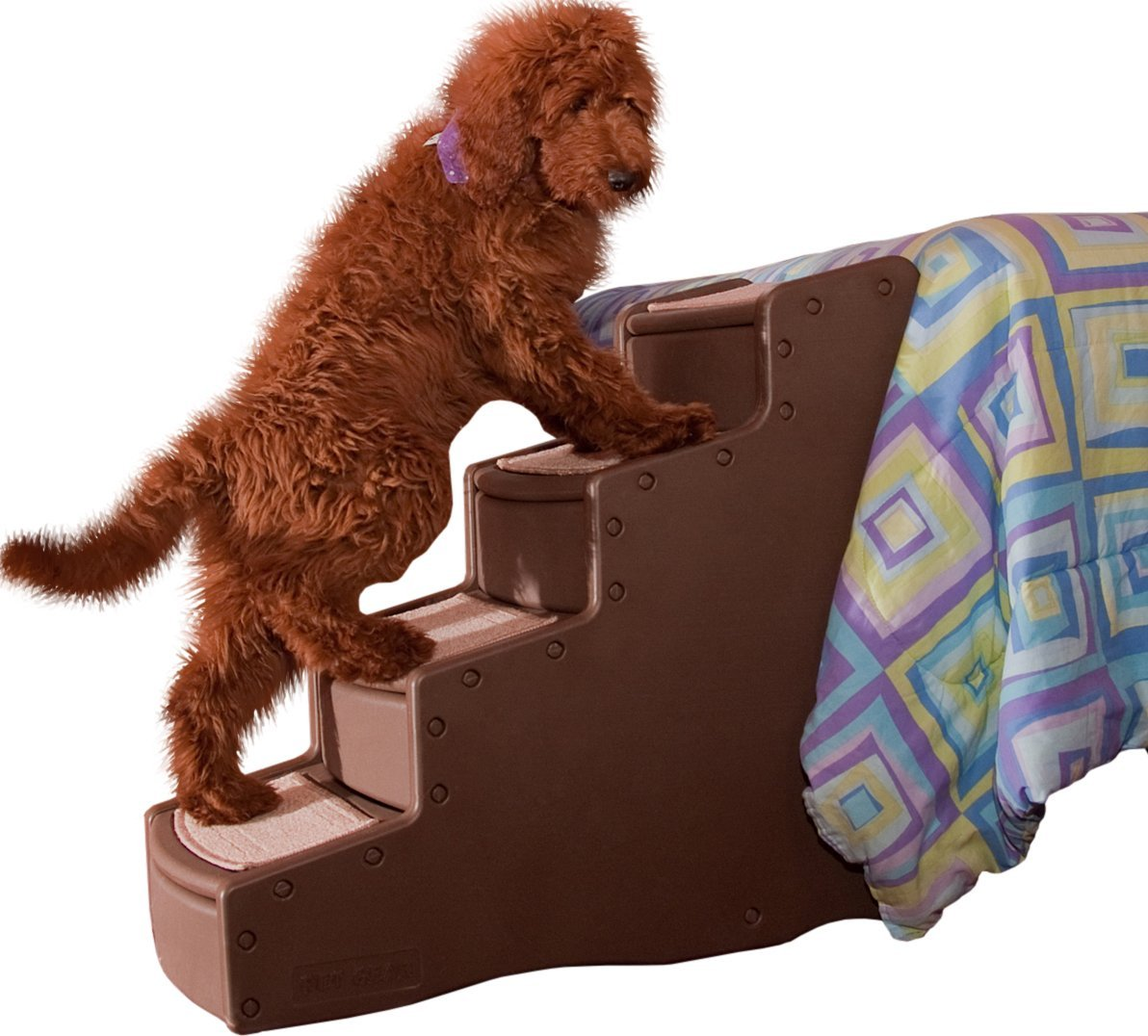 Guide To Buying The Best Dog Stairs For Your Dog Home Sweet Decor