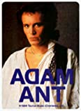 Adam And The Ants - Adam in White Shirt - RETRO AUTHENTIC 80s Sticker / Decal