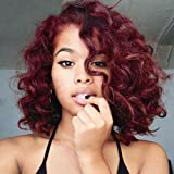 Mildiso Wigs for Black Women Short Curly Wig Afro Kinkys Curly Wigs African American Women wigs Red Wigs with Wig Cap M024 (Color: Wine Red, Tamaño: Short)