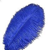 Sowder 10pcs Ostrich Feathers 12-14inch(30-35cm) for Home Wedding Decoration(Royal Blue) (Color: Royal Blue)