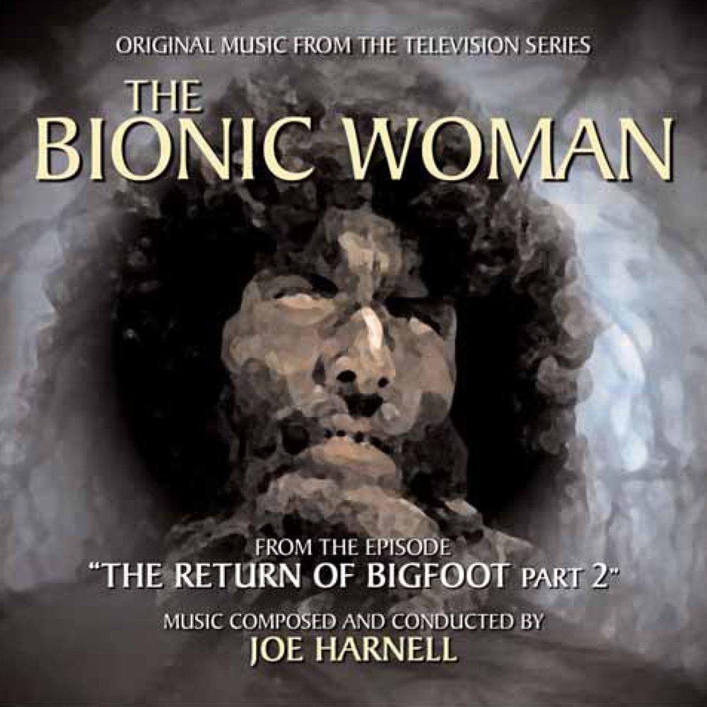 Bionic Woman Original The Bionic Woman-the Return of