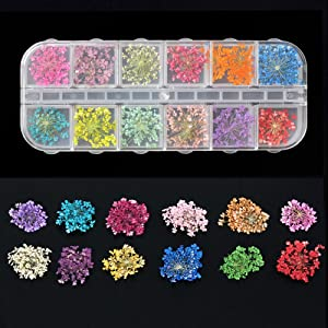 3D Nail Art Decoration Kits, 24pcs 12 Colors Nail Dried Flowers, 8 Sheet Floral Nail Art Stickers Decals, Curved Tweezers, Polish Pressed Dry Flowers Water Decal Manicure Design Tools Set (Luck011B) (Color: Luck011B)