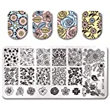 Summer Fruit Nail Art Stamping Template Tropical Punch Pattern Rectangle Image Plate Stamping Polish Needed BP-L066 (Color: BP-L066)