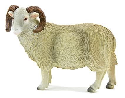 Curly Pets Sheep White Face Curly Horn Sheep