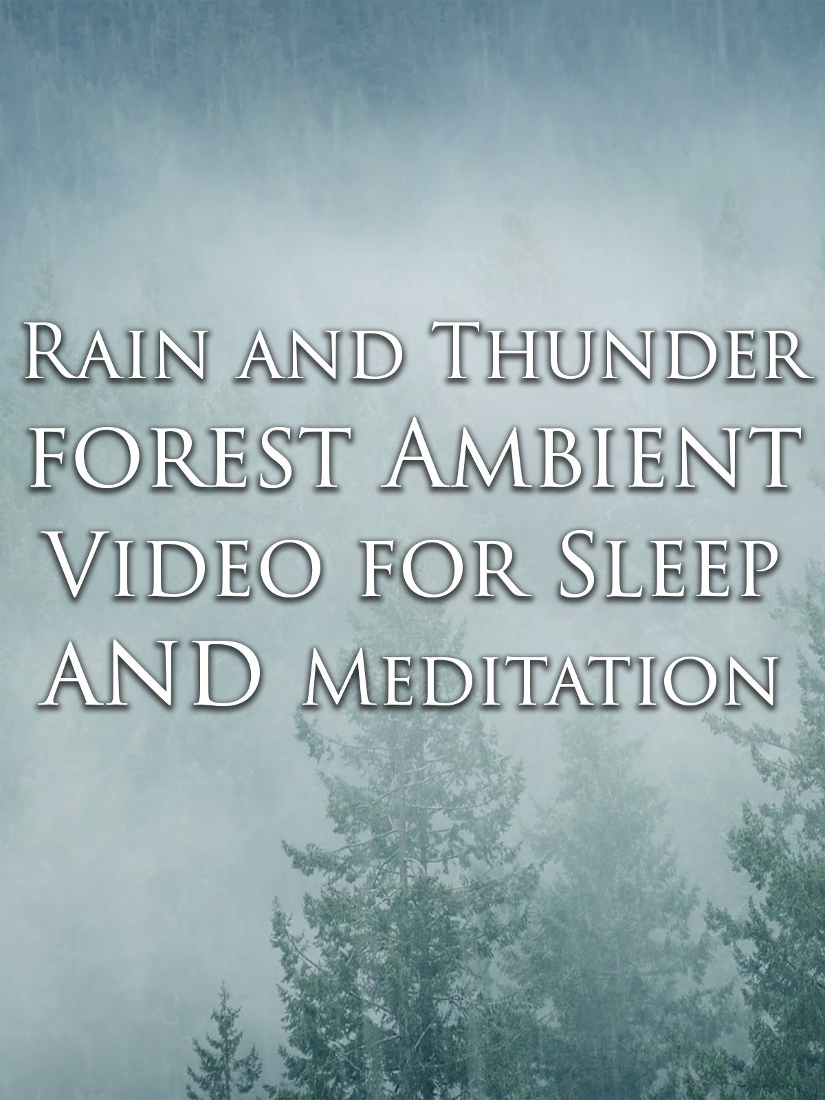 Rain and Thunder Forest Ambient Video for Sleep and Meditation