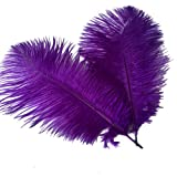 Sowder 14-16inch(35-40cm) Ostrich Feathers Plume for Wedding Centerpieces Home Decoration Pack of 10pcs(Purple) (Color: Purple, Tamaño: 14-16 inch)