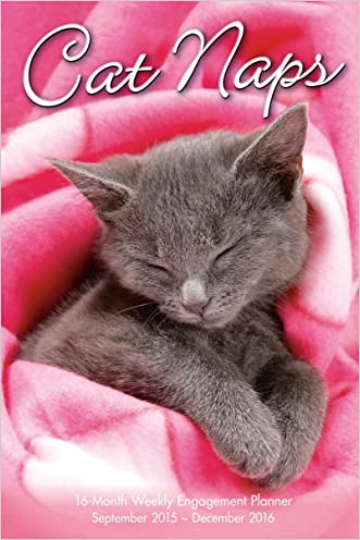 Cat Naps 2016 Engagement Calendar