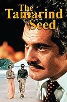 The Tamarind Seed
