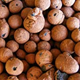 Hydro Clay Pebbles (Leca Stones) Orchid/Hydroponic Grow Media - 2 lbs by PowerGrow Systems