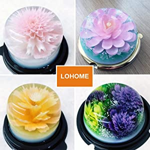 LOHOME 3D Gelatin Art Tools - Set of 10 PCS Stainless Steel Jelly Cake Needles Coming with One 10ml Syringe - Pudding Pastry Nozzles (Flower Shape 2) (Color: Flower Shape 2)