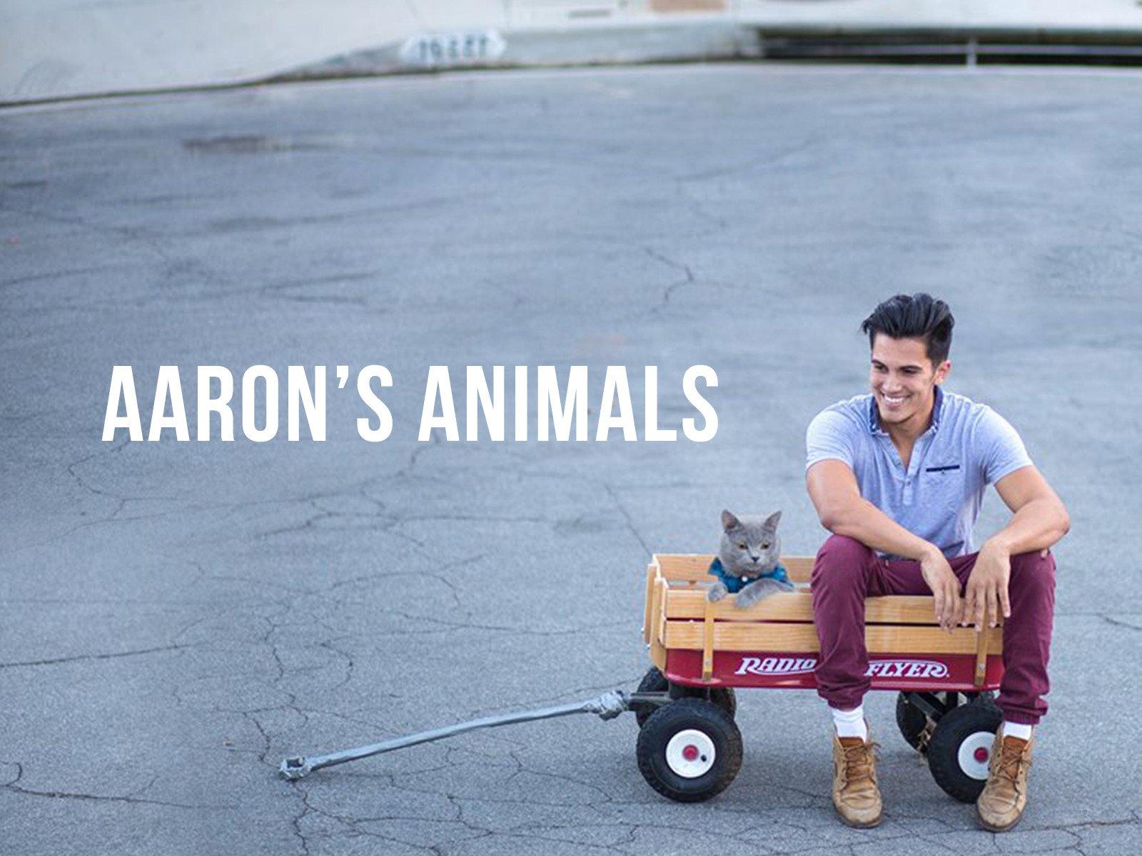 Aaron's Animals - Season 2