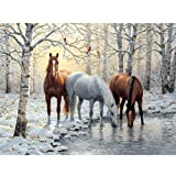Moohue 14CT Counted Cross Stitch Kits Winter Handsome Horse Cross Stitch Pattern DMC Cotton Thread NeedleCraft Kits (Winter Handsome Horse) (Color: Winter handsome horse)