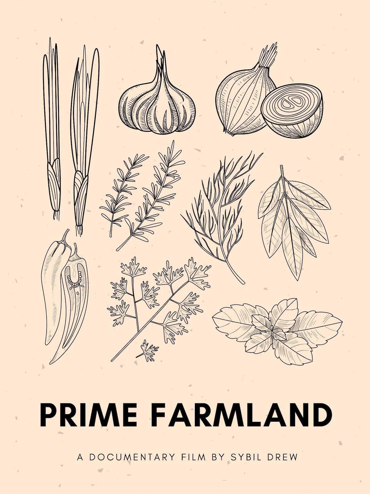 Prime Farmland on Amazon Prime Video UK