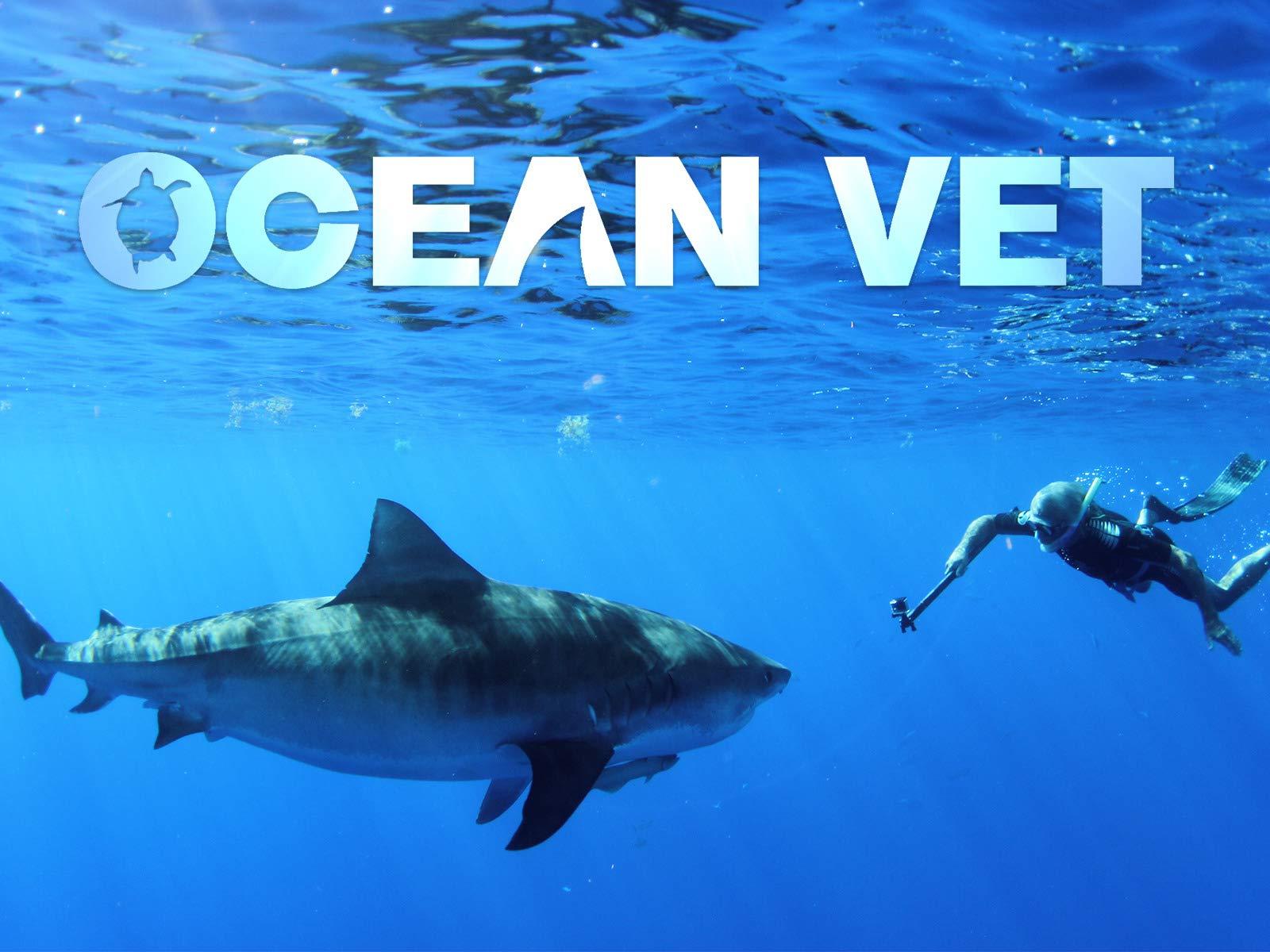 Ocean Vet - Season 1