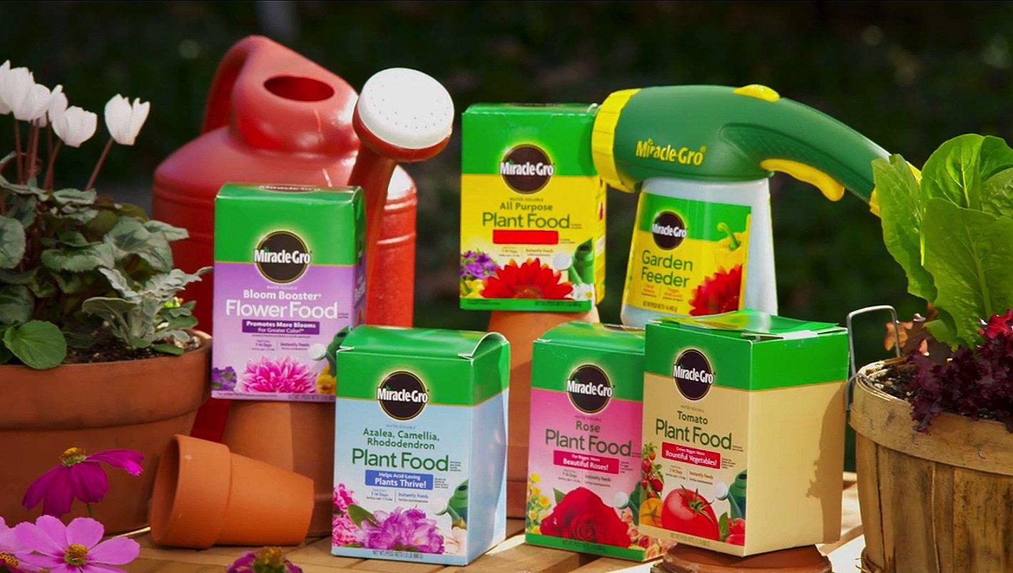 Buy Flowers Foods Now!