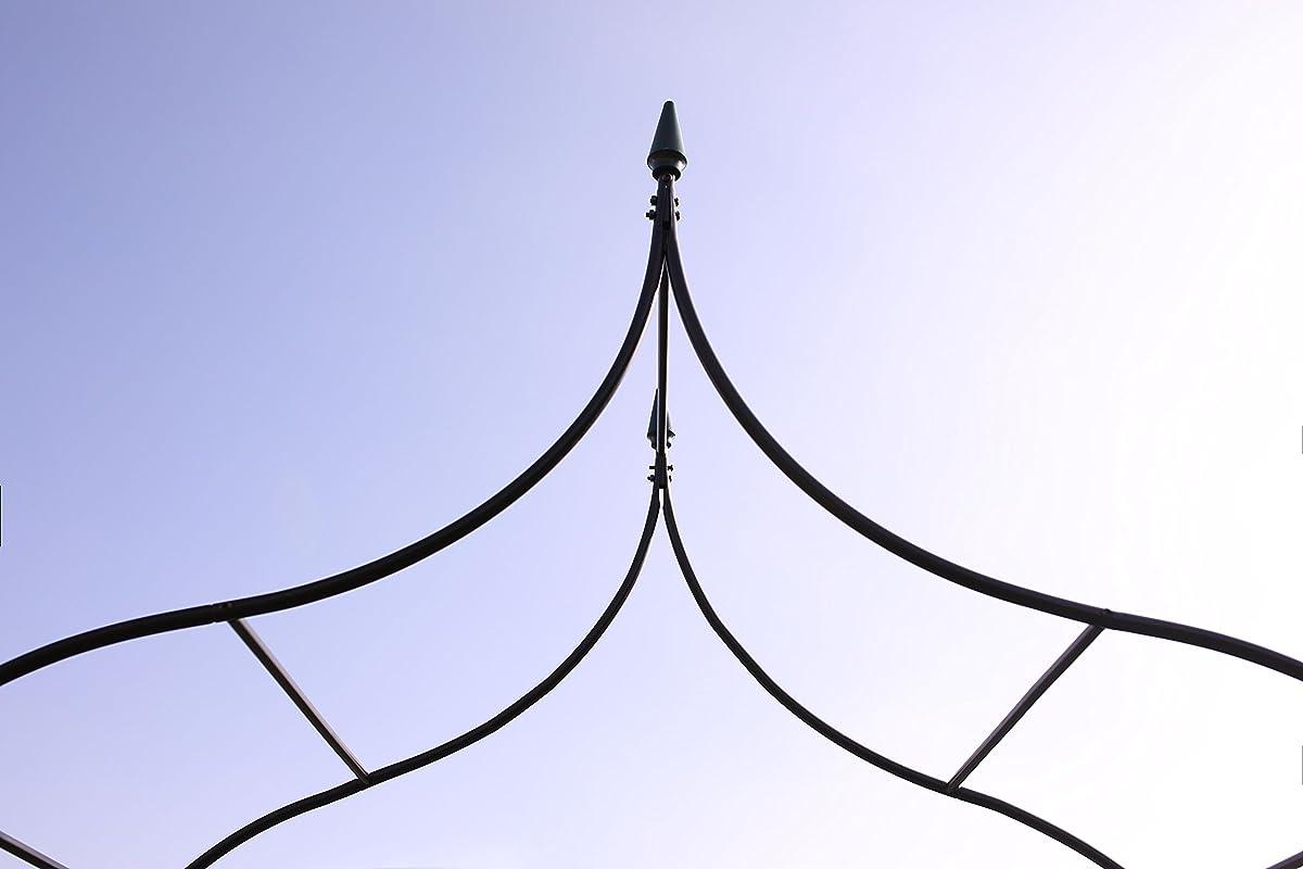 """1.Go Gothic Steel Garden Arch, 88"""" High x 45"""" Wide, Garden Arbor for Various Climbing Plant, Outdoor Garden Lawn Backyard"""