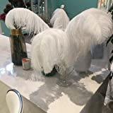 Sowder 16-18inch(40-45cm) Ostrich Feathers Plume for Wedding Centerpieces Home Decoration Pack of 10pcs(White) (Color: White, Tamaño: 16-18 inch)