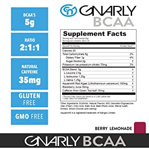 Gnarly Nutrition Bcaa Workout Supplement All Natural Muscle
