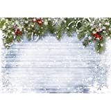 Christmas Backdrops for Photography 10 x 10 White Wood Floor Romantic Snowflake with Glitter Xmas Decorations Lagre Background for Holiday Party Seamless No Wrinkle (Color: White)