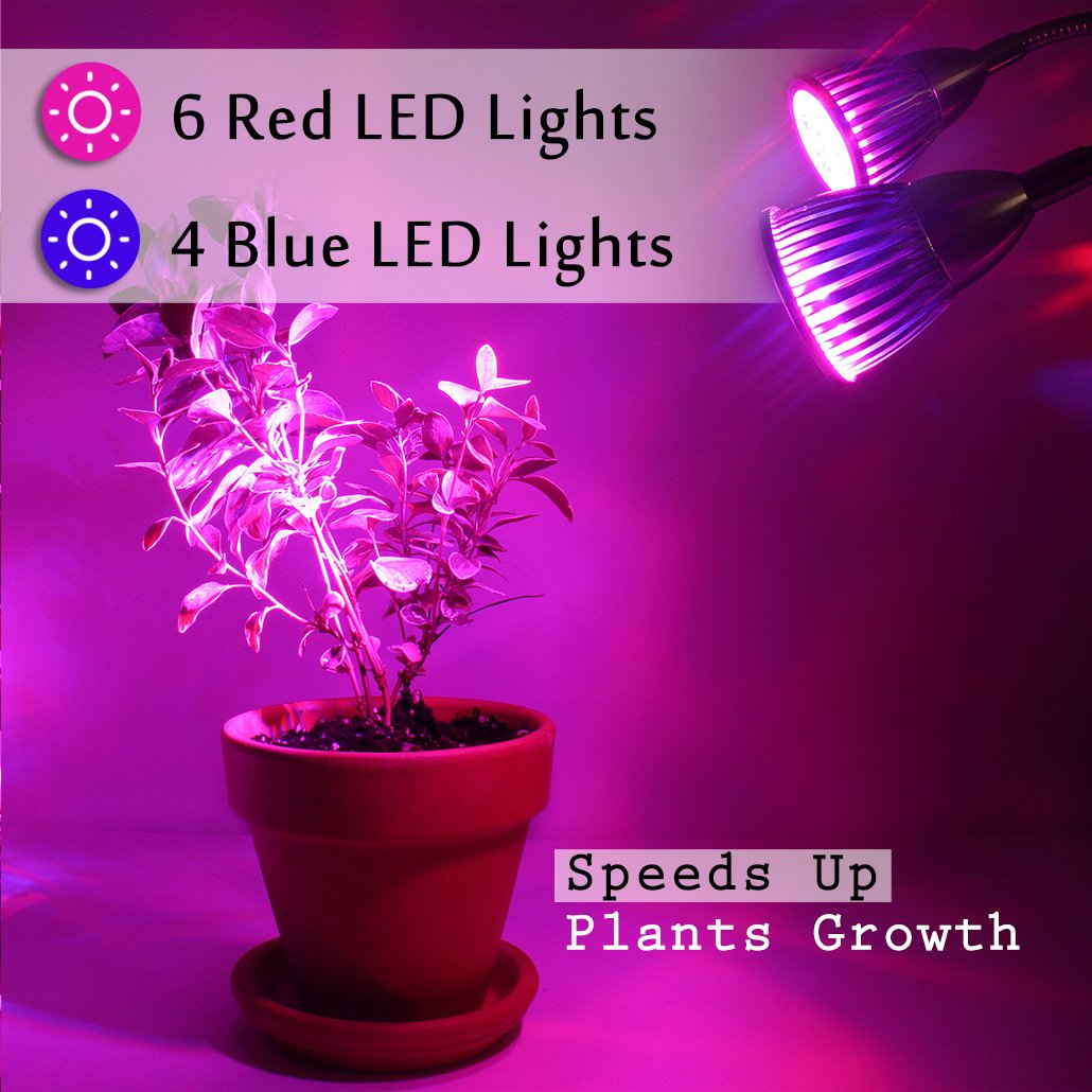 Rozway Premium Dual Head LED Grow Light | HIGH YIELDS | 10W LED Grow Lamp W/360 Adjustable Gooseneck LED Grow Lights for Indoor Plants, Plant Growing, Hydroponic Garden, Greenhouses, Gardening, Office