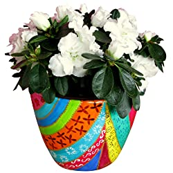 rainbow coloured porcelain plant pot