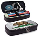 LIN. California Flag Bear Pencil Bag Pen Case, Students Stationery Pouch Zipper Carrying Case for Pens, Pencils Drawing Painting Children - High Capacity Toiletry Bag (Color: California Flag Bear, Tamaño: One Size)