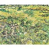 Art Panel - Meadow In The Garden Of Saint-Paul Hospital By Van Gogh