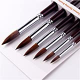 6pcs Round Point Tip Paint Brush Set  Sable Hair Artist Quality Art Painting Brush (Color: Sable Brush, Tamaño: New 168)