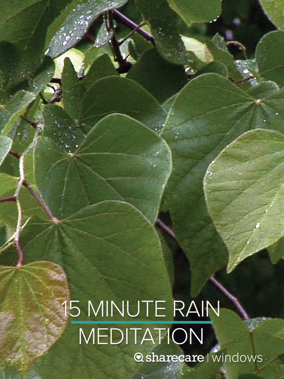 15 Minute Rain Meditation