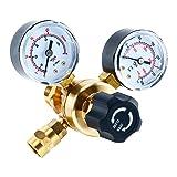 YaeTek Argon CO2 Regulators Gauges Gas Welding Regulator CGA580 Compatible with Miller Lincoln Mig Tig Weld 0-4500PSI / 0-10BAR (Color: without hose)