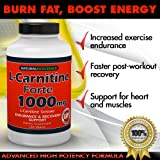 L-Carnitine - 1000mg in Each Double Potency Tablet - Double Value L-Carnitine Tartrate - Carnitine Amino Acid – Boost Energy and Endurance – High Potency L-Carnitine L-Tartrate Formula - 120 Tablets