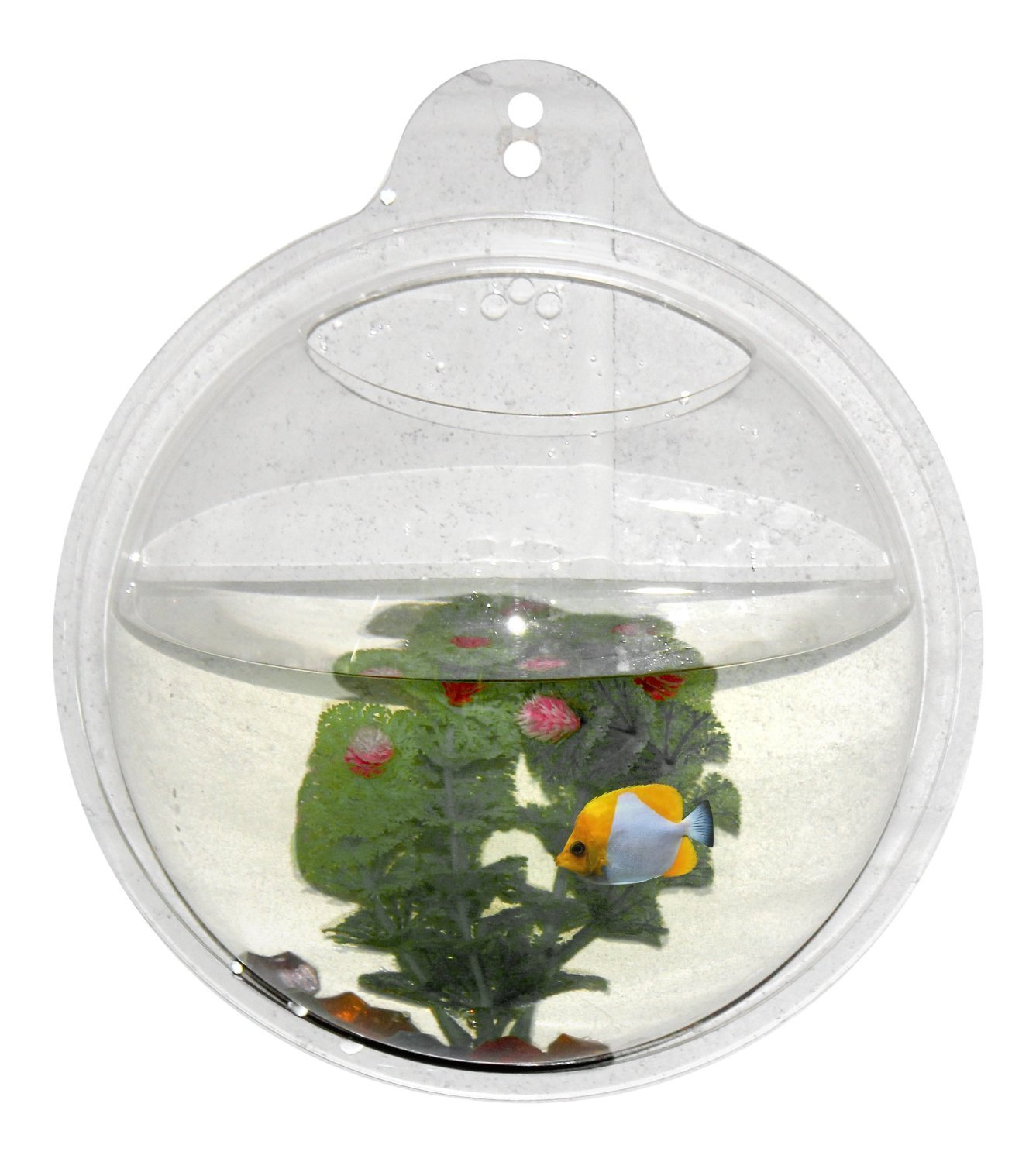 Fish aquarium price india - Buy Wrapables Wall Mount Hanging Beta Fish Bubble Aquarium Bowl Tank Online At Low Prices In India Amazon In