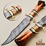 NoonKnives: Hand Made Damascus Steel Collectible Bowie Knife Handle Camel Bone (Red) (Color: Red)