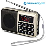 PRUNUS Portable Radio SW/FM/AM(MW)/MP3/USB/SD/TF Rechargeable with Neodymium Speaker. Large Button and Large Display. Stores Stations Automatically. (NO Manual Memory/Delete Stations Function (Color: Gold)