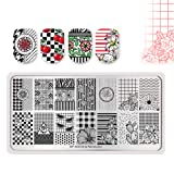Summer Fruit Nail Art Stamping Template Tropical Punch Pattern Rectangle Image Plate Stamping Polish Needed BP-A05 (Color: BP-A05)